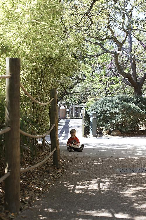 2011 03 01 ofad blog